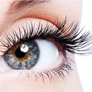 Eyelash/ Eyebrow Tint