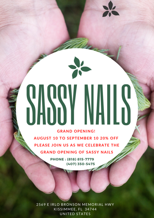 Sassy Nail - 2569 E Irlo Bronson Memorial Hwy Kissimmee, FL